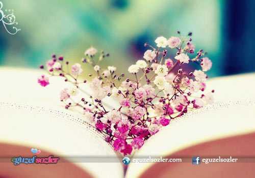 sevgiliye çiçek notları