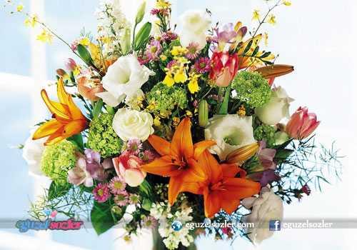 çiçeklere yazılan sözler